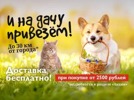 силос для собак yandex маркет